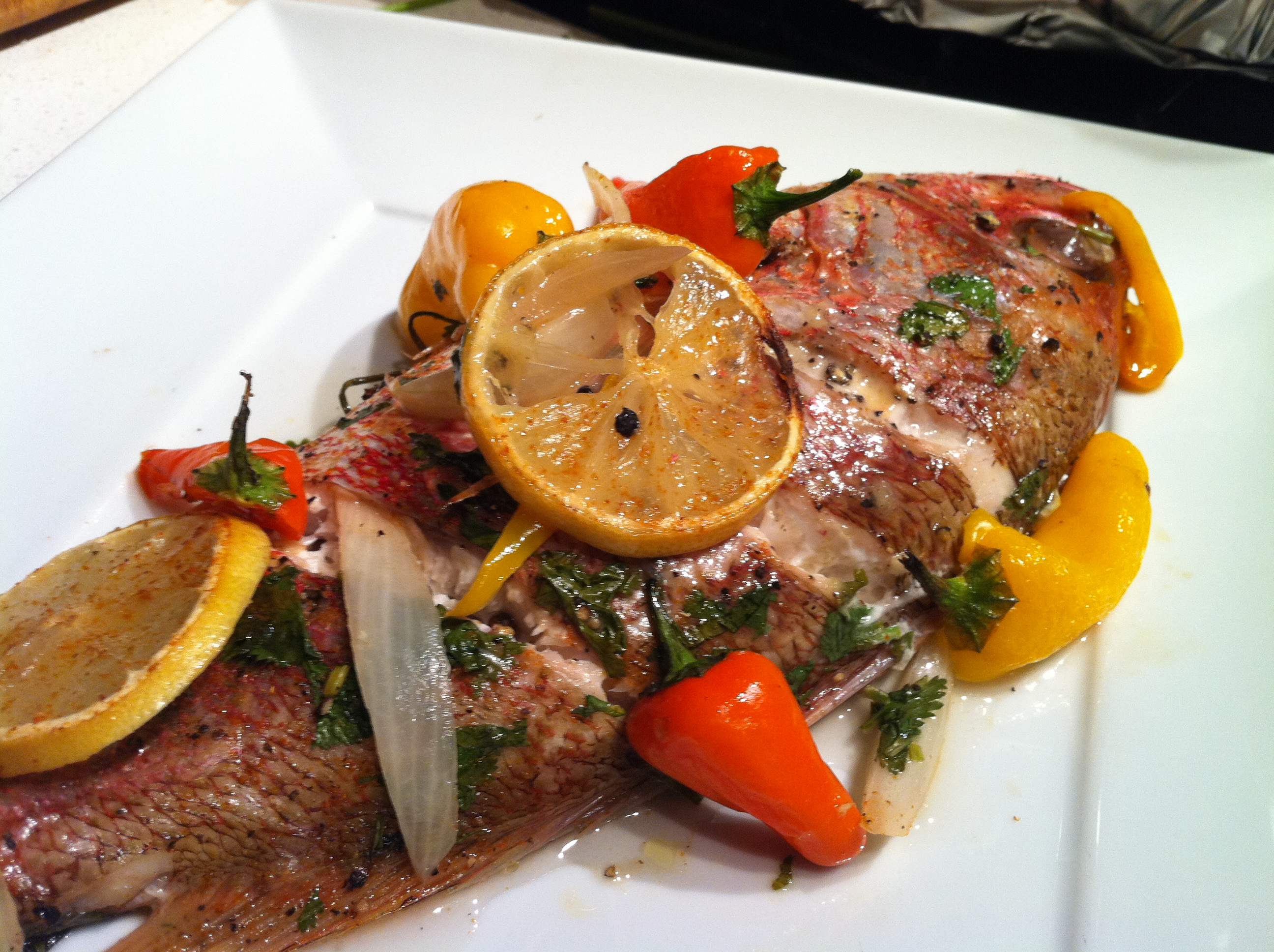 Oven roasted red snapper gourmet de constructed for Gourmet fish recipes